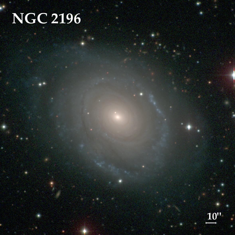 #275 NGC 2196